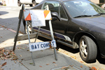 bay const