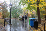 autumn, washington square park