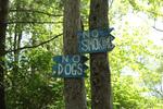 no dogs no smoking